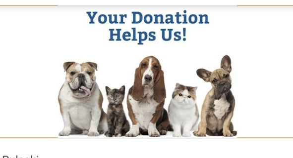 Charitable Donation animal protection please animal protection center needs your help