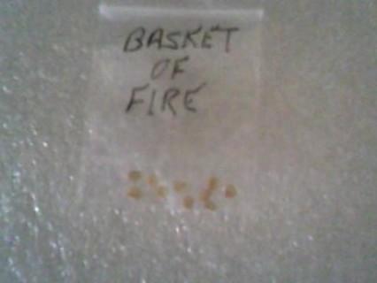 Basket of Fire Pepper Seeds
