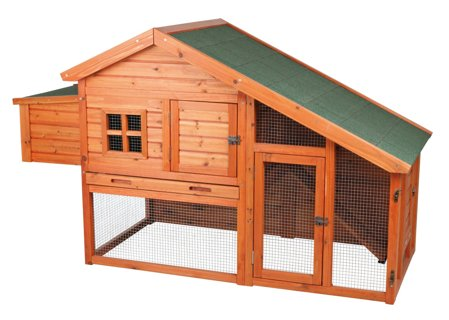 BRAND NEW ~ Chicken Coop with a View ~ Keep chickens! Farm Fresh Eggs!
