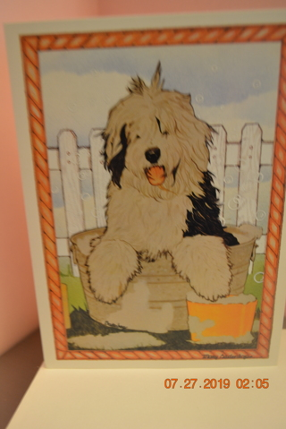 """****""""PLAYFUL SHAGGY PUPPY"""" BLANK CARD W/ENVELOPE***FREE SHIPPING"""