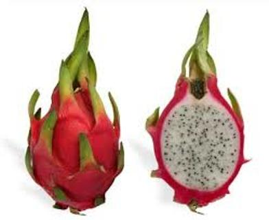 5 White Dragon Fruit Cactus Seeds