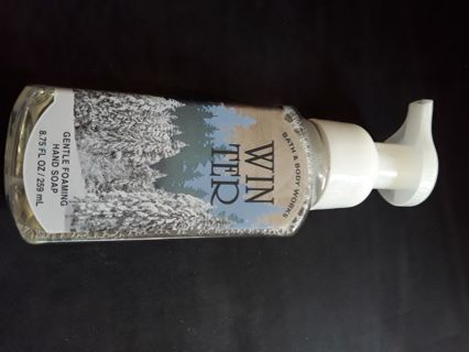 Bath and Body Works Foaming Handsoap Winter scent RARE!
