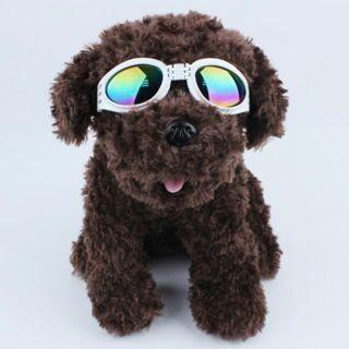 White Dog Glasses Eye Wear Protection Strap UV Sunglasses