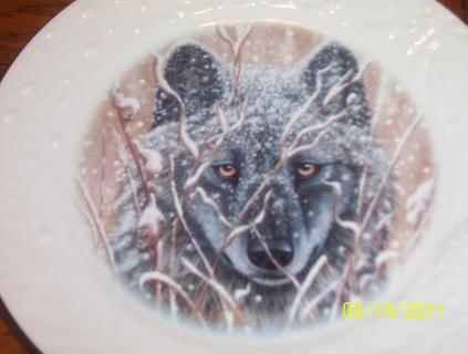 4pc. wolf plates