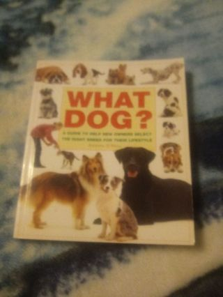 What Dog? Book