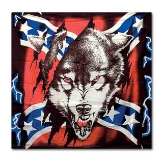 Free Wallpaper Of A Rebel Flag With A Wolf In It Other
