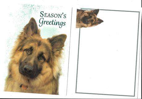 Christmas Card Unused With Envelope Dog