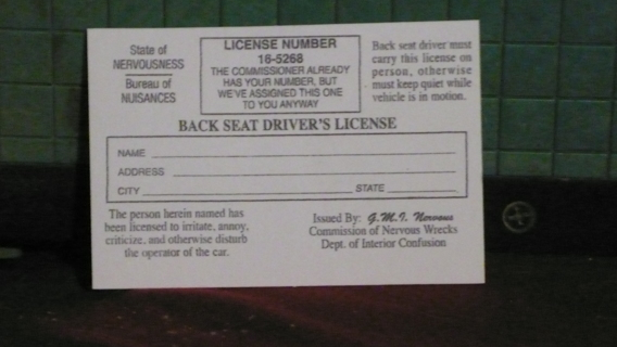 BACK SEAT DRIVERS LICENCE