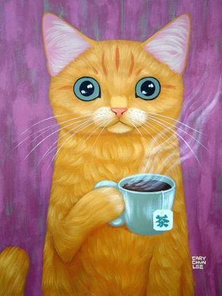 New crazy Tea Cat Photo