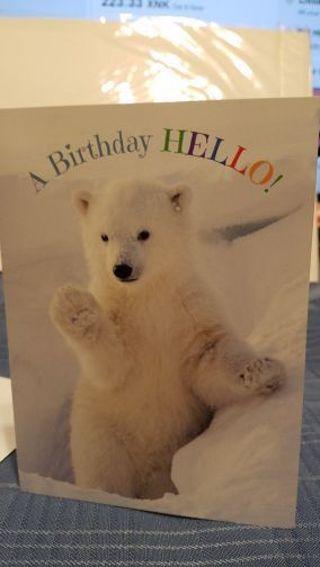 A BIRTHDAY HELLO FROM A FRIENDLY POLAR BEAR CARD W/ ENVELOPE