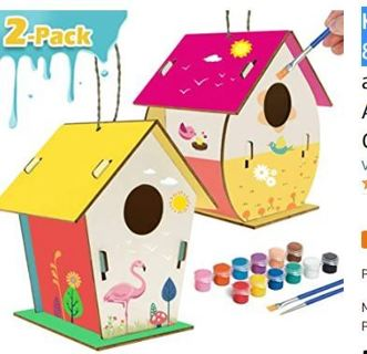 Kids Crafts Wood Arts and Crafts for Kids Ages 8-12 DIY Bird House Kit