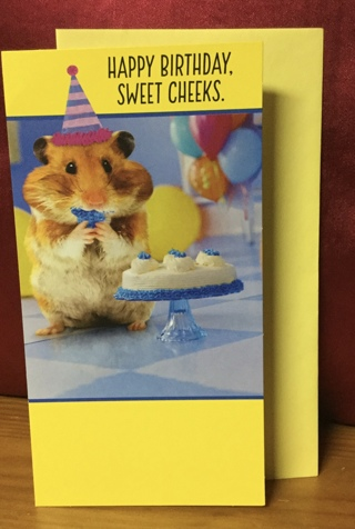 Hamster Eating Birthday Cake card with envelope