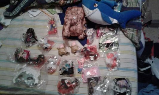 20 Happy Meal toys and 2 plush toys.