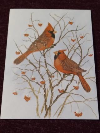 Notecard - Cardinal