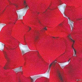 Artificial Red Rose Petals
