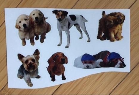 Six Dog Stickers
