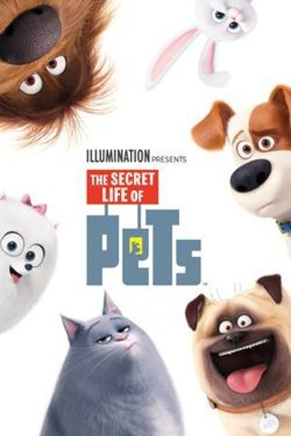 """""""The Secret Life of Pets"""" HDX - """"I Tunes redeem only"""" Digital Movie Code"""