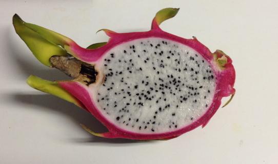 10 WHITE DRAGON FRUIT (Pitaya / Pitahaya / Strawberry Pear) seeds