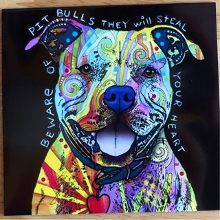 "PIT BULLS WILL STEAL YOUR HEART - 4 x 3"" MAGNET"