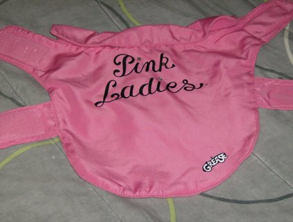 Free: PINK LADIES JACKET - Dog - Listia.com Auctions for Free Stuff