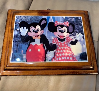 Disney Fans: Mickey Mouse & Minnie Mouse Picture