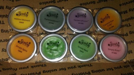 8 big scentsy testers!!!!!