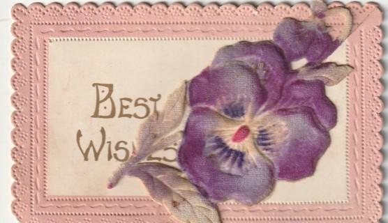 Vintage Used Postcard: Pre Linen: Beautiful Fold Out Felt Violet Best Wishes Postcard