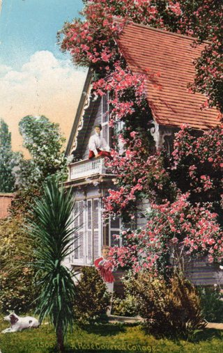 Vintage Used Postcard: 1910 A Rose Covered Cottage