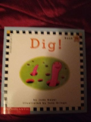 Used Children's Scholastic Book Dig