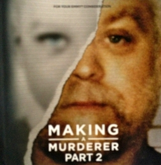 MAKING A MURDERER, Complete Part 2, 3-DVDs, 10 eps, 2019 Netflix FYC documentary FREE SHIPPING