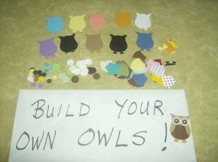Build Your Own OWLS (6)