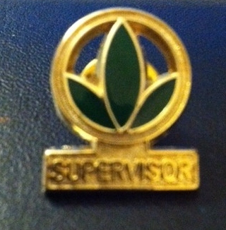 herbalife supervisor pin new