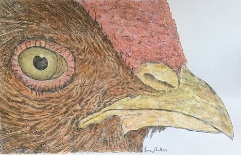 """CHICKEN DETAIL - 5 x 7"""" art card by artist  Struthers - GIN ONLY"""