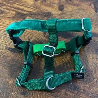 2 harnesses