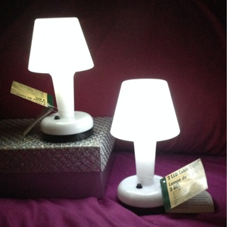 Cute NEW Item Two LED Table Light With On/Off Switch
