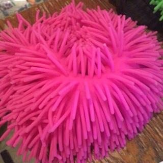 Hot pink googley ball