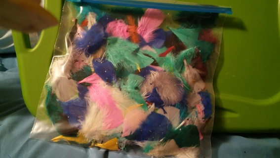 Misc bag of feathers