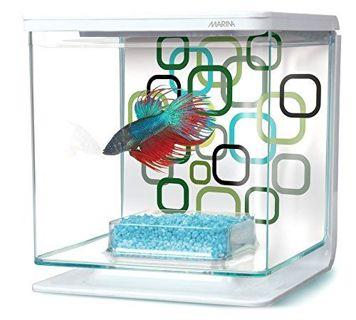 Brand New Betta Aquarium Starter Kit