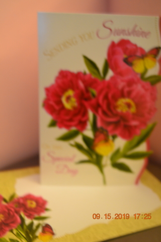 "***GORGEOUS FUSHCIA COLORED FLOWERS WITH MONARCH BUTTERFLIES ""BIRTHDAY CARD"" W/MATCHING ENVELOPE***"