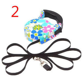 5M Puppy Pet Dog Cat Automatic Retractable Traction Rope Walking Lead Leash CN