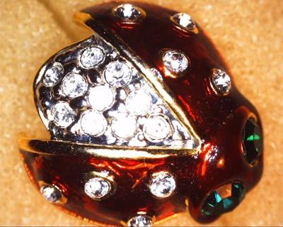 lady bug pin art