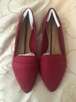 Brand new pair of shoes size 9