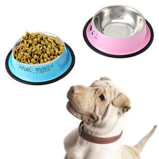 Colorful Pet Dog Cat Puppy Stainless Steel Feeding Food Drink Water Bowl Dish