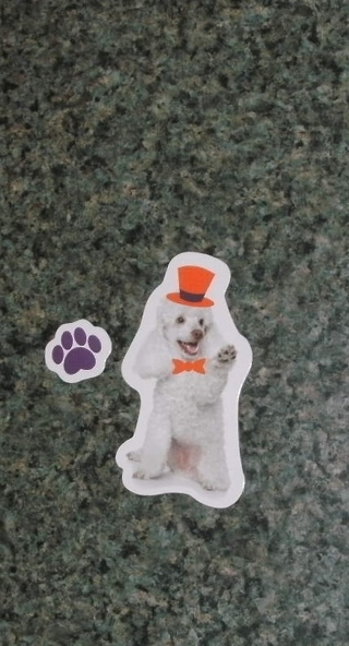Halloween Dog Magnet With Paw Magnet Poodle