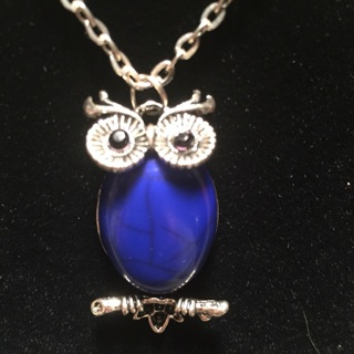 New blue owl necklace.   Cute