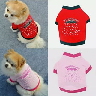 Pet Dog Clothes Bone Printed Puppy T-shirt Summer Pure Cotton Soft Striped Shirt