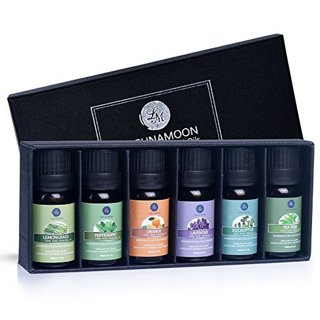 1 NEW Essential Oils Gift Set Natural Aromatherapy Gift Box FREE SHIPPING