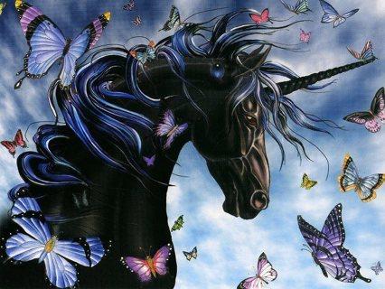 New beautiful horse unicorn  and butterflies photo 4x6