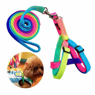 Small dog collars 7 rainbow