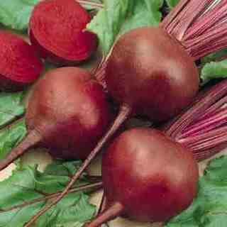 beet-seeds